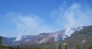 Willow Fire 3 pm 7-28-15