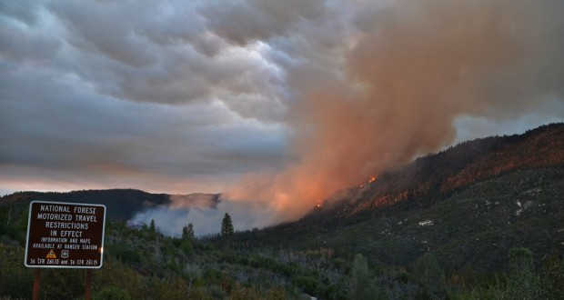Willow Fire - photo by Gina Clugston