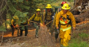 Fire crews on the Rough Fire - photo SNF