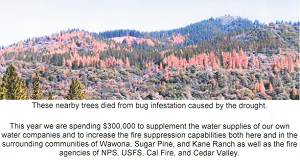 Fish Camp CROPPED Fire Rescue Association