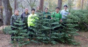 North Fork Scouts with Christmas Trees