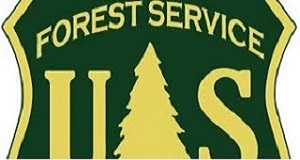 Forest Service 300x160
