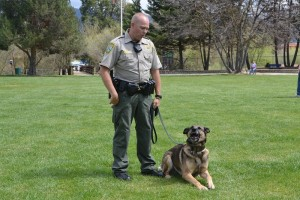 Deputy Brian Lunquist with K9 partner Arthur showing his I Mean Business face - photo by Gina Clugston