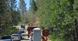 Delays on Road 223 due to hazard tree removal - photo by Gina Clugston