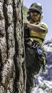 SAR_High_line_rescue_technique_-_SAR_team_member_anchored_to_tree_-_Photo_by_Virginia_Lazar