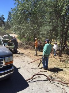 Firewise Sierra Sky Ranch community 2 photo by Donna Dozier