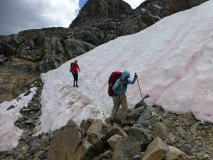 Wendy Fisher Crossing glacier below Muir Pass