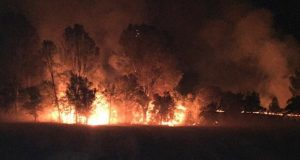 Marshes Fire - photo Tuolumne Co. Sheriff