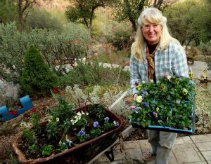 sue-langley-foothill-garden