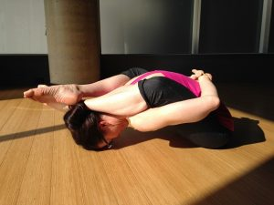 virginia-eaton-oct-8-snol-training-for-holidays-yoga-1145680