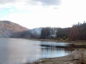 burt-stalter-hazard-tree-burns-at-bass-lake-nov-1-2-2016-iv