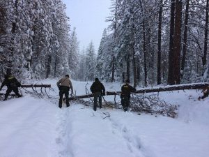 mcso-rescue-sunday-nov-27-2016-chilkoot-campground-moving-trees-out-of-the-way-courtesy-mcso