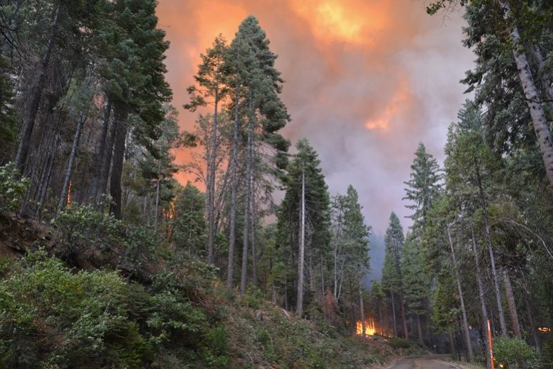 Loss of a gem history burns in railroad fire sierra for West fall