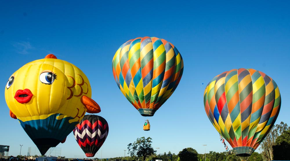 Balloons over Windsor 8