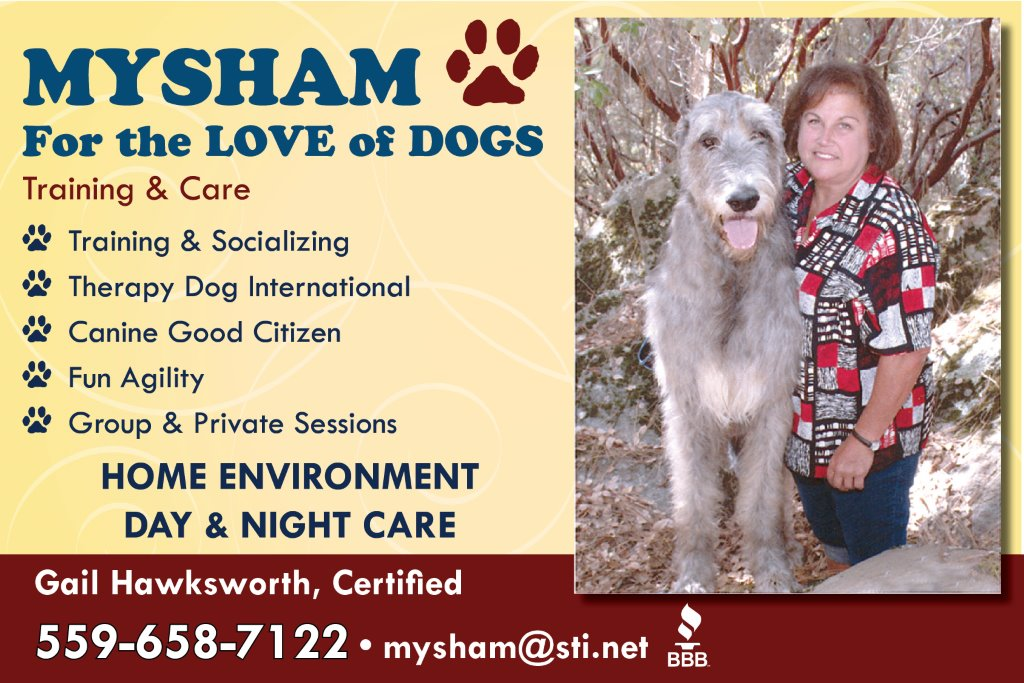 Mysham For The Love Of Dogs Sierra News Online