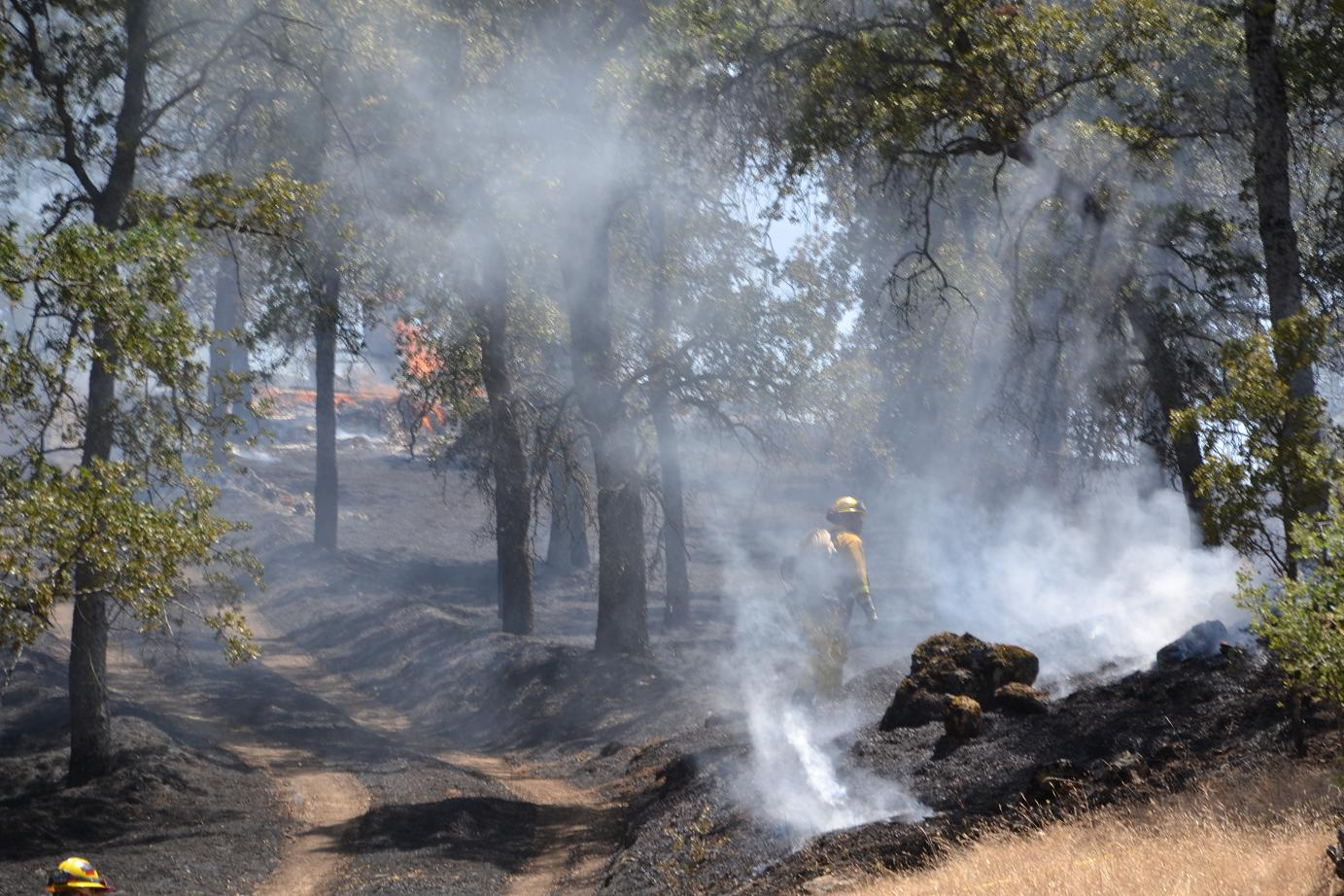 Firefighter in the smoke on Lakes Fire - photo by Gina Clugston