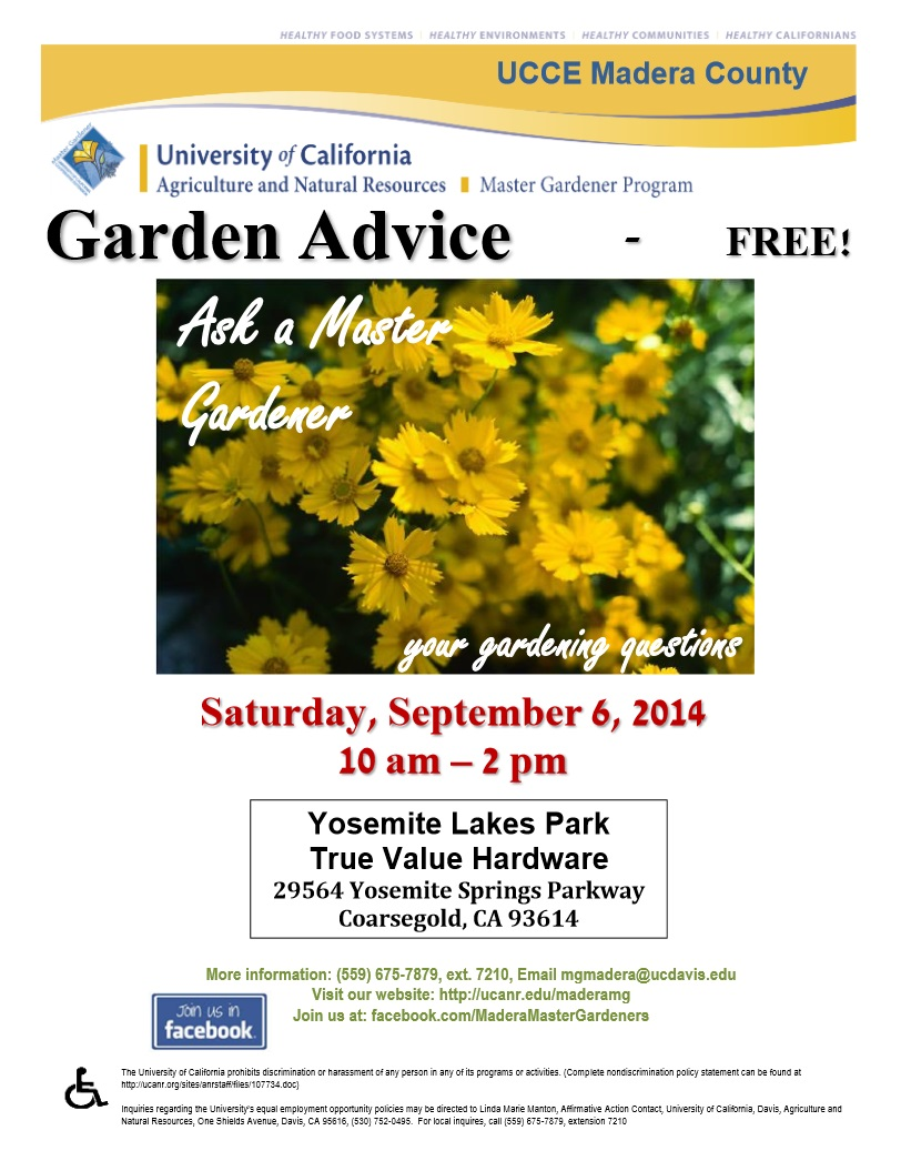 Master gardeners answer questions in ylp sierra news online for Gardening questionnaire