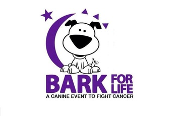 Bark for Life Picture