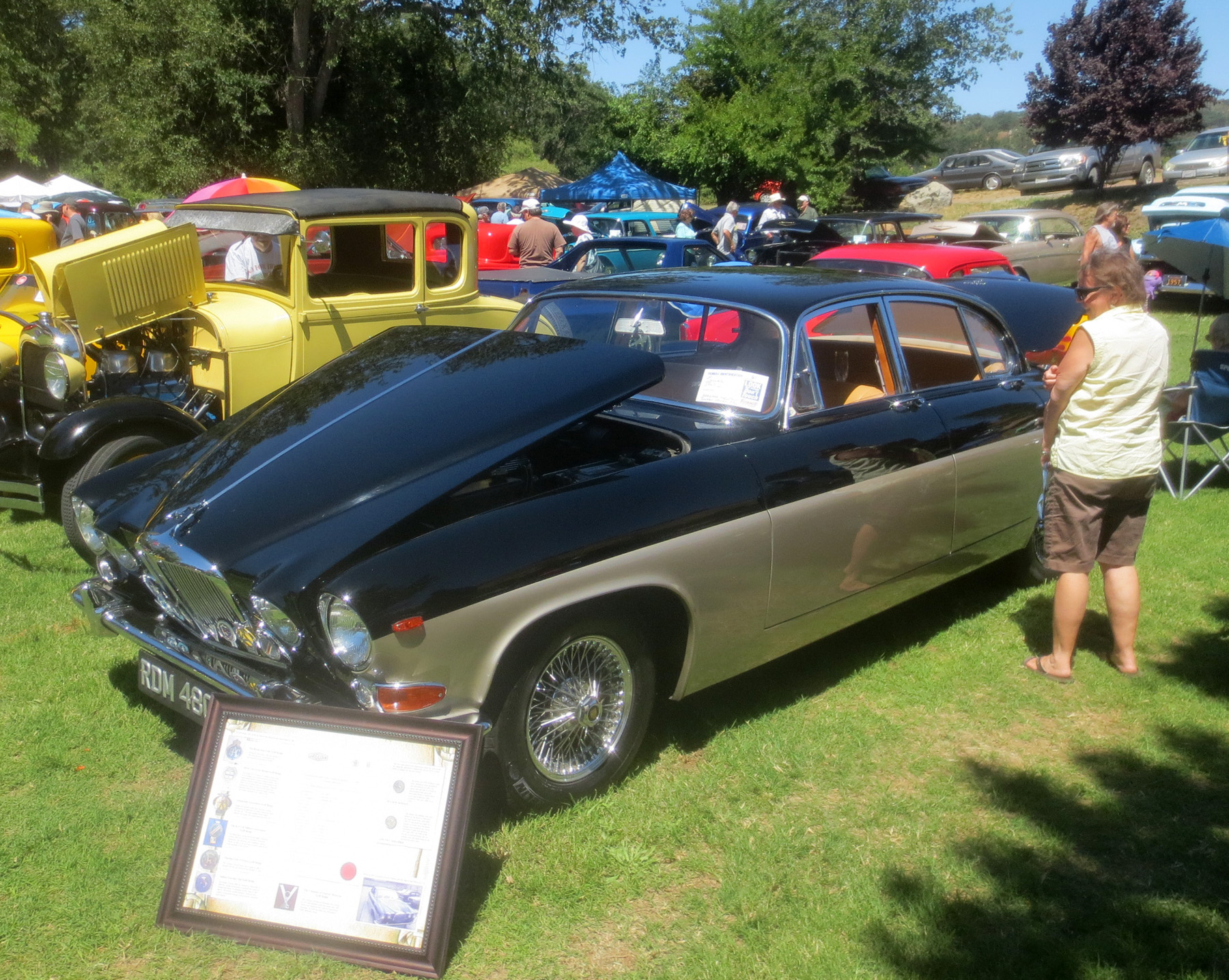 Coarsegold Car Show-4