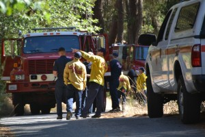 Cal Fire crews lining out their project