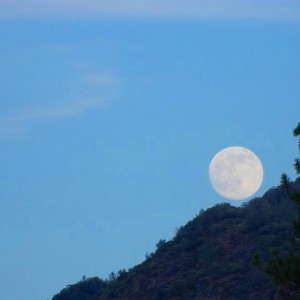 Full Moon by Courtney Cara June 30 2015