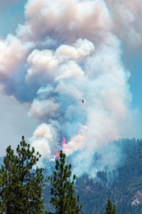 July 29 Willow Fire II by Jimmy Quilter