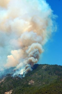 July 29 Willow Fire V by Jimmy Quilter