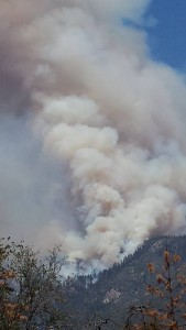 July 29 Willow II Fire by Michelle Platt appx 3 pm