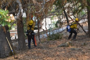 Kern County firefighters prepping homes along Peckinpah Acres ahead of Willow Fire
