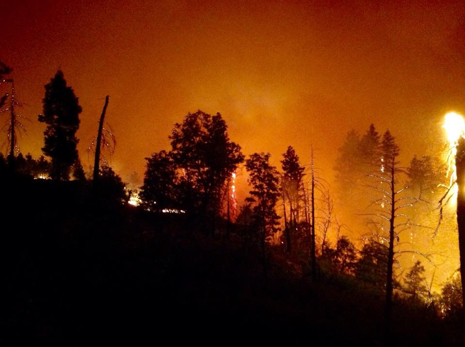 Night Ops on Division M Willow Fire 1 - photo courtesy Burt Staler Sierra National Forest