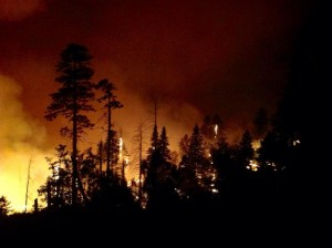 Night Ops on Division M Willow Fire 2 - photo courtesy Burt Staler Sierra National Forest