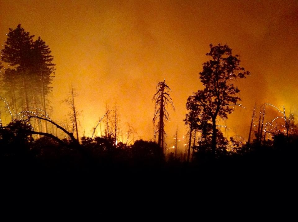 Night Ops on Division M Willow Fire 7 - photo courtesy Burt Staler Sierra National Forest