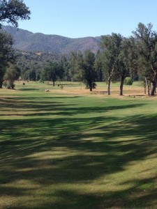 Sierra Meadows Golf Course and Country Club 9 - photo by Kellie Flanagan