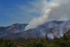 Willow Fire 7-26-15