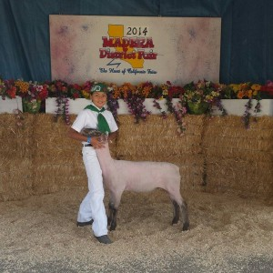 CRA Eden Hussey from Coarsegold 4-H