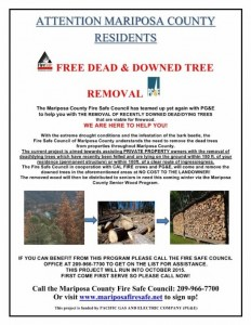 Dead Tree Removal Fire Safe Council