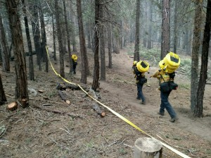 Firefighters building hose lays on Rough Fire - photo SNF