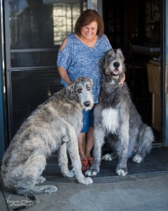 Gail Hawksworth with two of her Irish Wolfhounds - photo by Virginia Lazar 2015