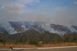 Willow Fire from Road 274