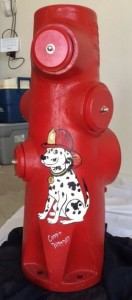 Front of fire hydrant