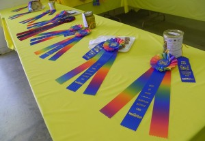 Mariopsa County Fair Best of Show Ribbons WS - photo by Kellie Flanagan 2015