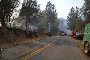 Sundance Fire burning on south side of Road 420