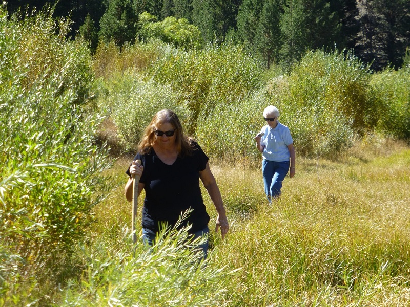 Suzette and Rosemary Working Their Way Along Dynamo Pond