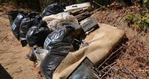 Coarsegold Resource Conservation trash photo II CROPPED by Gina Clugston Sept 2015