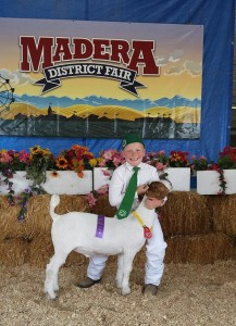 Sept 2015 Lucas Wade Madera Fair Coarsegold 4H Goat - photo by Carrie Jenkins