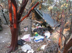 Trash from pot grow on Sierra National Forest - photo Madera Co Sheriff