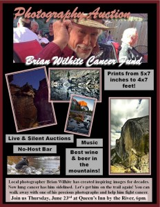 Brian Wilhite photography auction