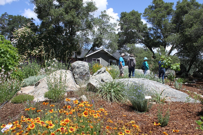 Low Water Garden Design Workshop In Mariposa Sierra News Online