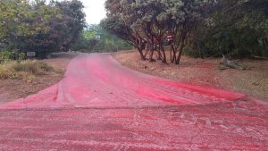 Slurry on driveway at Fork Fire - photo by Gina Clugston