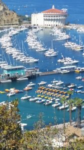 dream-vacations-catalina-harbor-courtesy-nancy-gunning